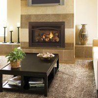 Fireplace Insert   Heat & Glo Grand i35C   NW Natural ...