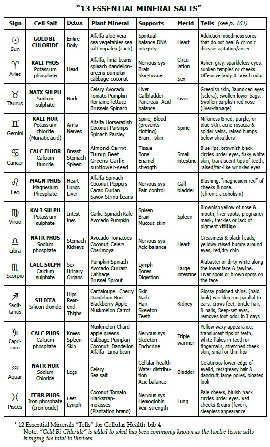 cell-salt-chartjpg 551×912 pixels Homeopathy, Biochemical Cell - weekly exercise plans