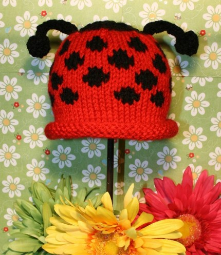 Fly Away Home Knit Baby Cap Pattern PDF