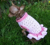 Knitted Puppy Sweater - Bronze Cardigan