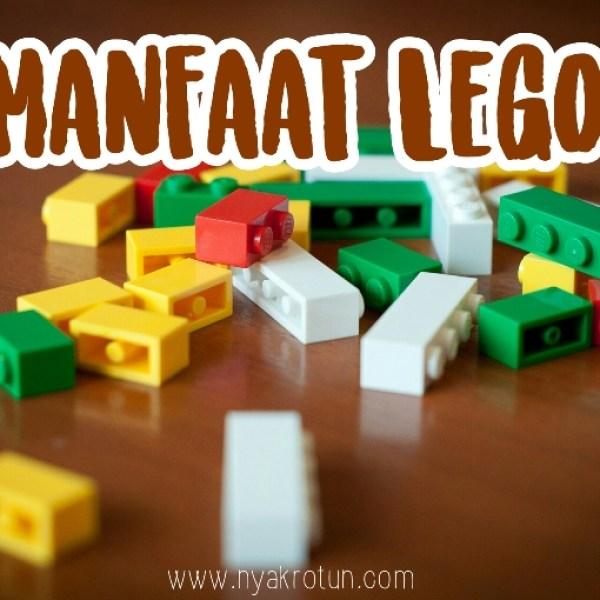 Lego, Mainan dengan Segudang Manfaat