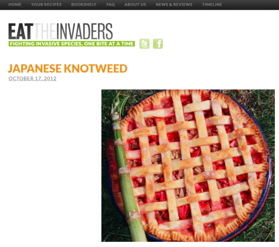 Eat the Invaders knotweed