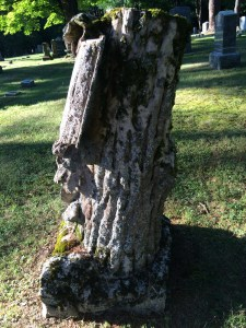 Treetone in Evergreen Cemetery in Pine Plains NY