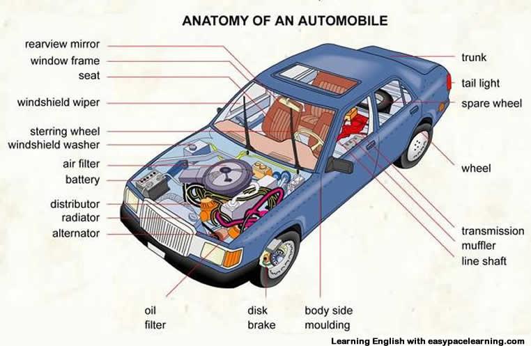 Car parts Diagram Quizlet