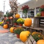 WestviewCiderMill3Pumpkins