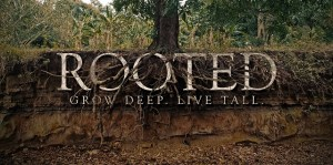 Rooted (Youth Group)
