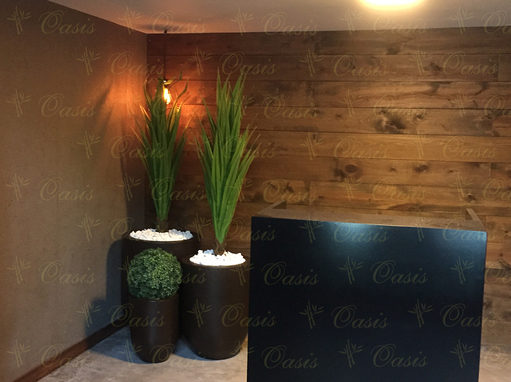 Arboles Artificiales Para Decoracion De Interiores Oasis Decoración Y Jardinería | Plantas Artificiales