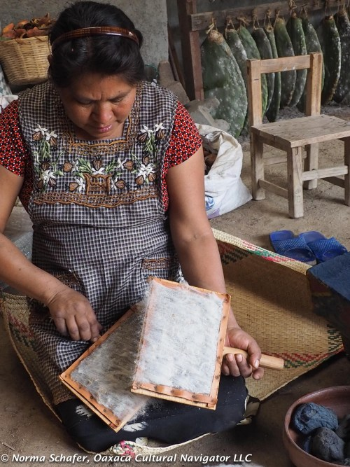 Carding sheep wool, a woman's tradition to prepare for spinning, dyeing then weaving