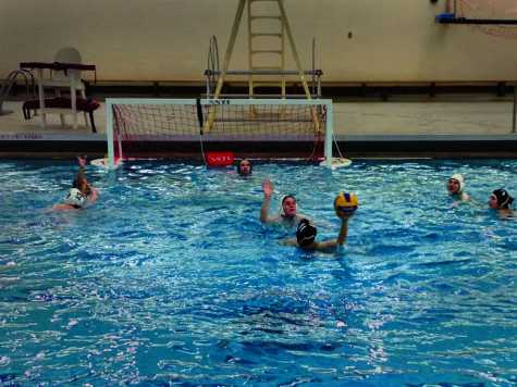 Club Water Polo Seeks Comeback Following Hiatus