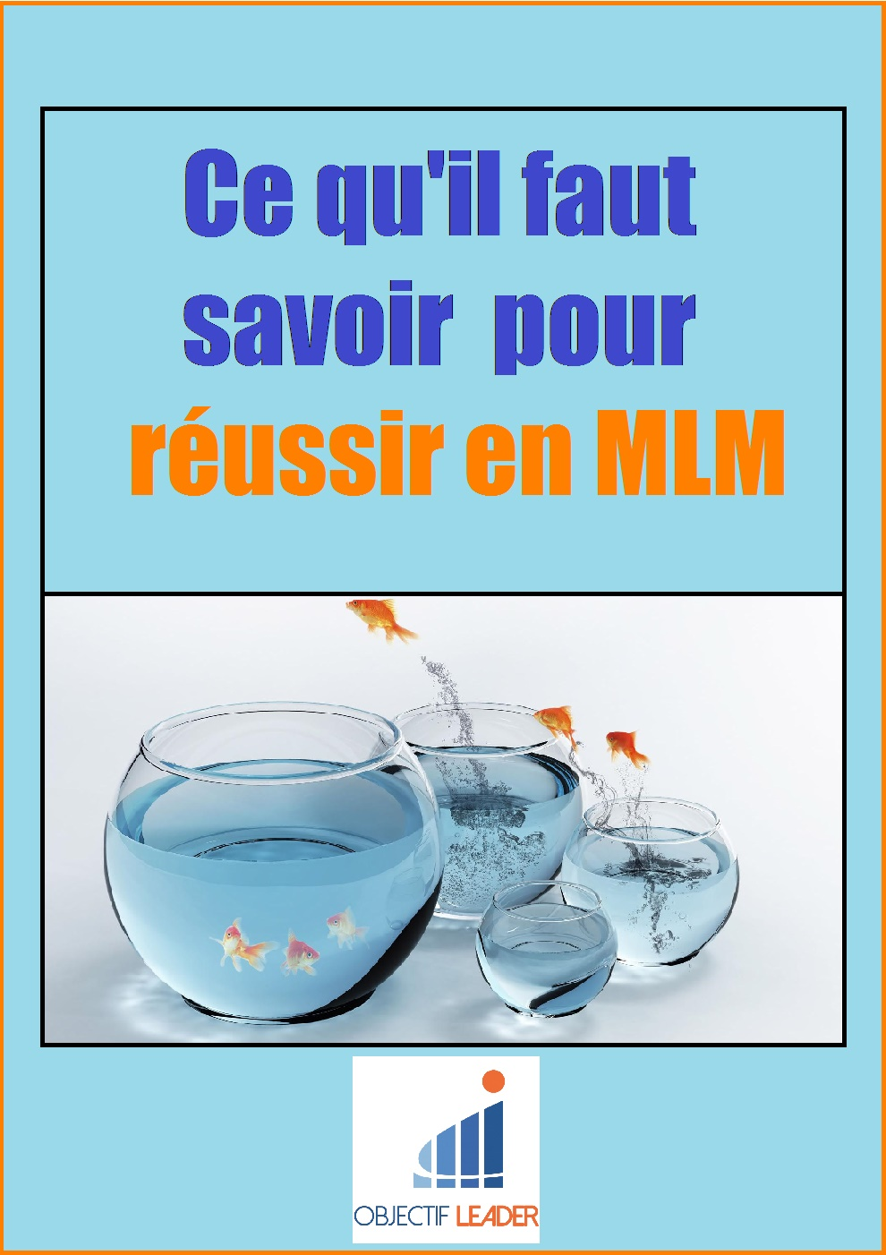 ebook MLM offert
