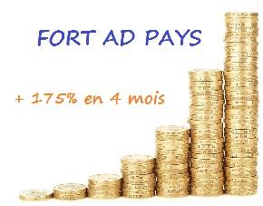 Témoignage Fort Ad Pays : comment faire du +175% en 4 mois ?