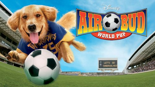 Medium Of Air Bud Dog