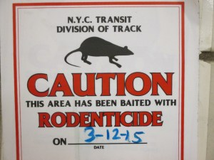 rats in the walls rodenticide