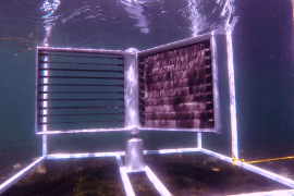 A water turbine in test trial. Photo by crowdenergy.org