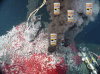 Figure 1 - A hydrothermal vent system, maybe the source of our next medicines? Source: Wikimedia Commons