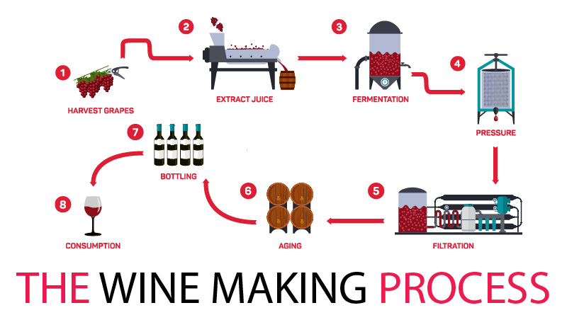Ohaus The Wine Making Process And The Perfect Pour