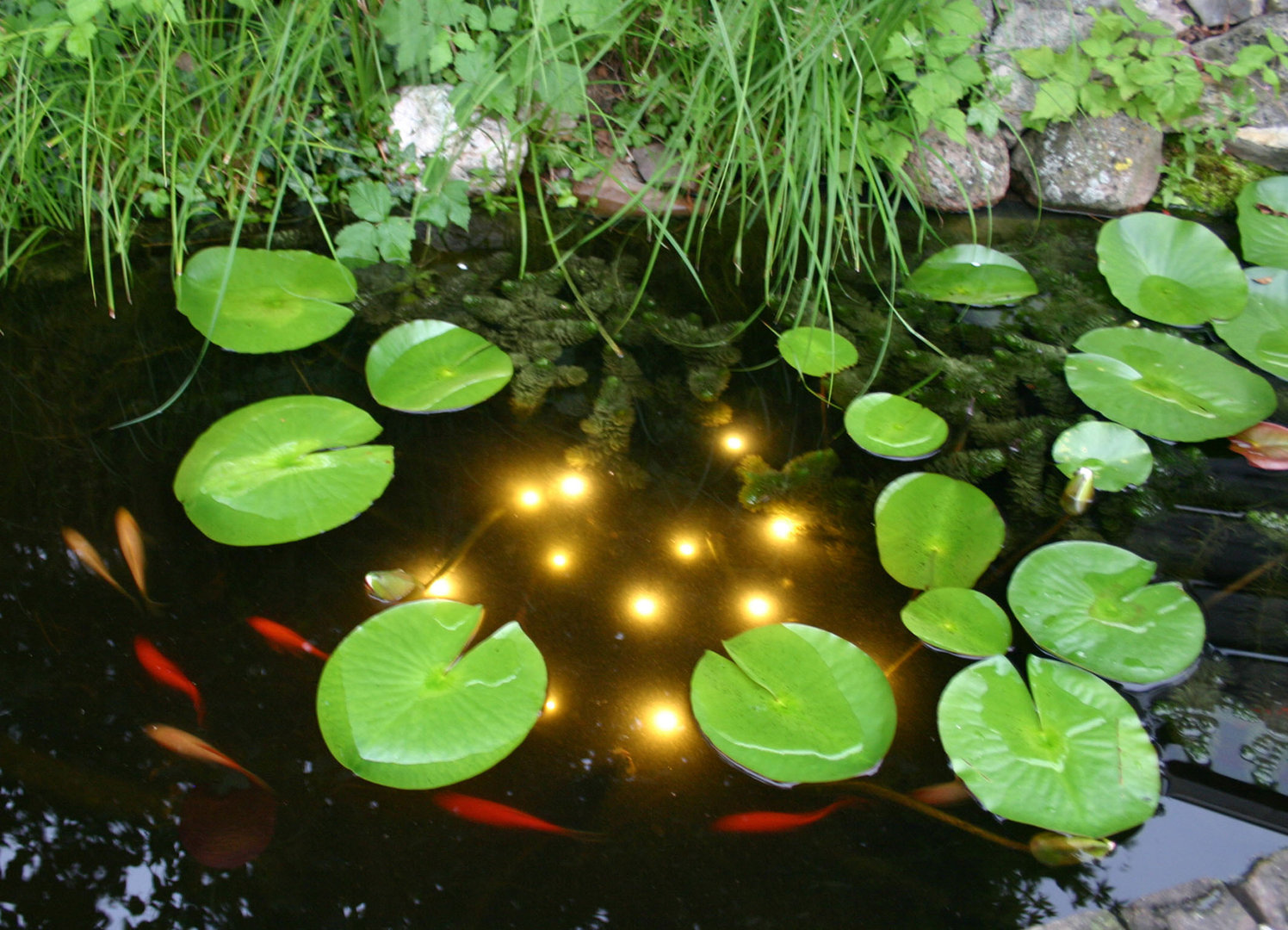 Eclairage Pour Bassin Eclairage 13 Led Immergé Welding Pond Light Velda