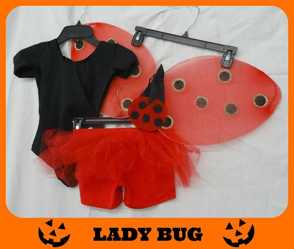 goodwill lady bug costume