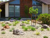 Low Maintenance Backyard Landscaping - Landscape Ideas