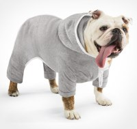 Dog Jogging Sweatsuit With Hoodie