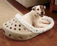 There's A Shoe Shaped Dog Bed That Exists For Dogs That ...