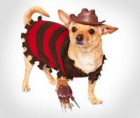 Dog Sharp Hand Joe costume : Ashens