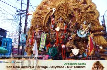 Cuttack durga puja bhasani 2015 (6)