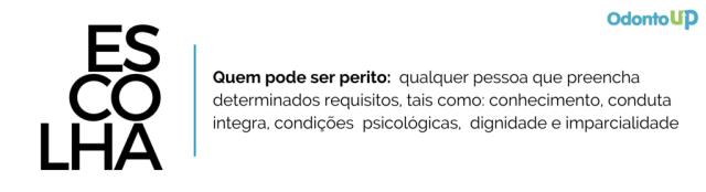 ESCOLHA PERITO