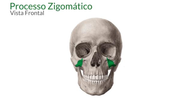 processo zigomatico da maxila