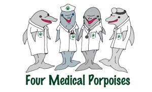 4medicalporpoisestb