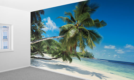 5 X 5 Poster Photo Mural - Lidl — France - Archive Des Offres