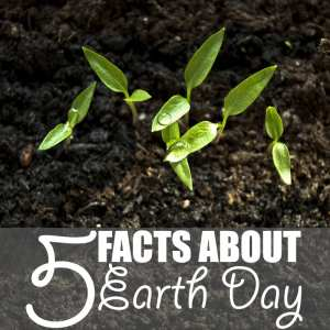 5 Facts About Earth Day | Here are five facts about Earth Day accompanied by five simple ways to integrate the philosophies of this one day into your daily life.