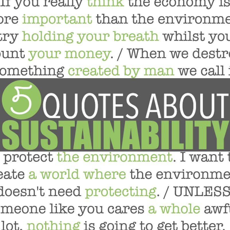 Sustainability Quotes 5 Quotes About Sustainability By Of Houses