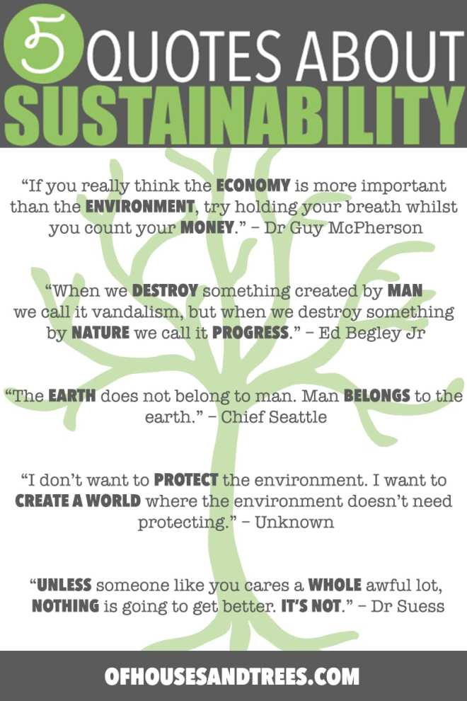 Sustainability Quotes | Five sustainability quotes superimposed over images of mountains, forests and a child hugging a very large tree. Cheesy? Perhaps. True? Hell yes.