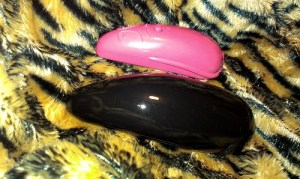 Cat toy or vibrator?