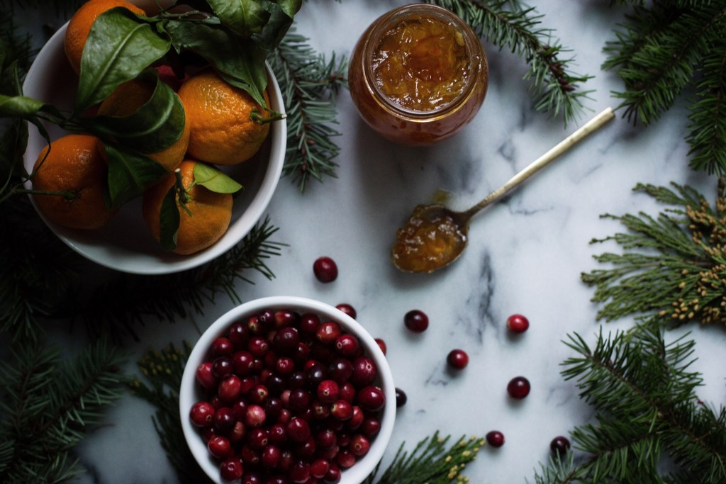 cranberry gingerbread steamed pudding with whiskey and cider molasses hard sauce // ohhoneybakes.com