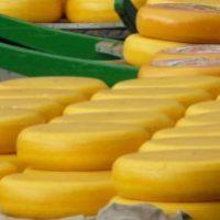 Holländischer Käse oder: Was sind eigentlich Rx-Boni?
