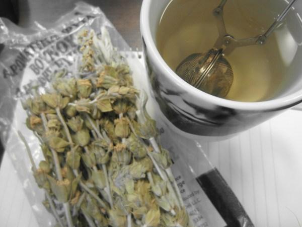 2013319 wild tea4