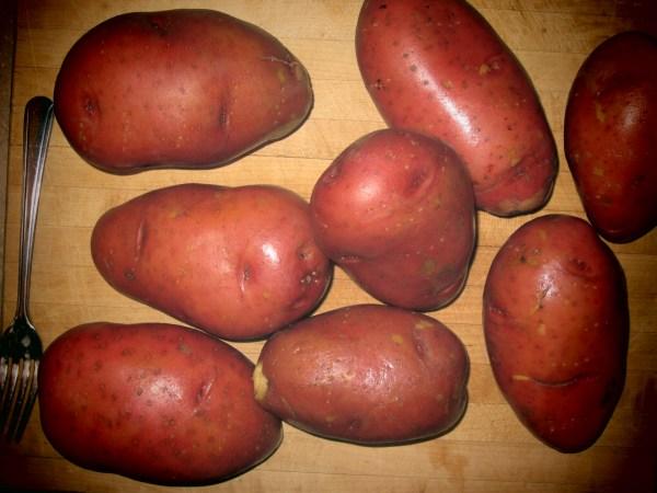 2013327 potluck potatoes