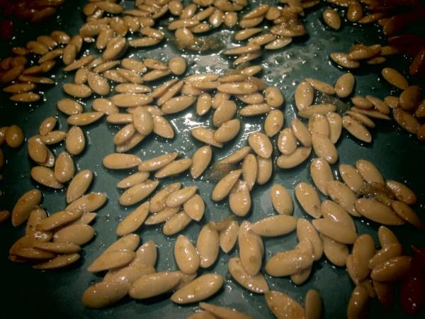 2013724 roasted cantaloupe seeds9