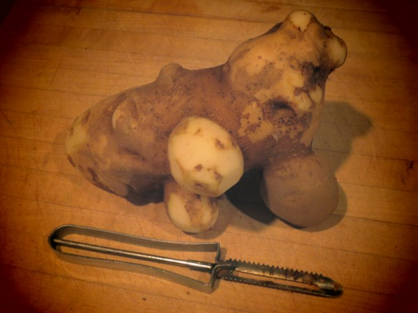 20131017 organic potato5