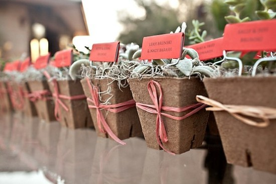 Succulent Seating Cards 550x366 Wedding Details: Escort Cards and Place Cards, Part 2