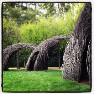 Dumbarton Oaks Patrick Dougherty Installation 300x300 DC Guide: What To Do