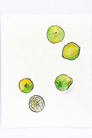 Courtney Khail Watercolor Painting OSBP Limes Quick Pick: Courtney Khail Watercolor Stationery