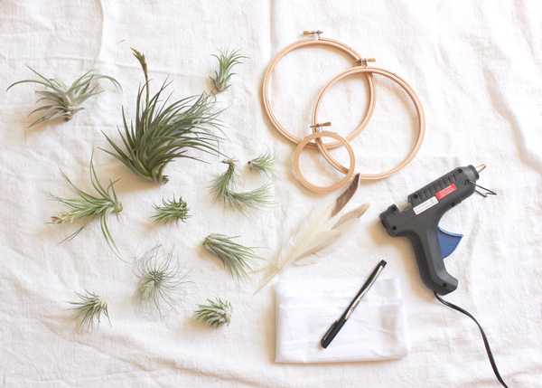 air plant wreath supplies DIY Tutorial: Summer Air Plant Wreath