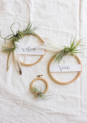 air plant wreath welcome summer 1 DIY Tutorial: Summer Air Plant Wreath