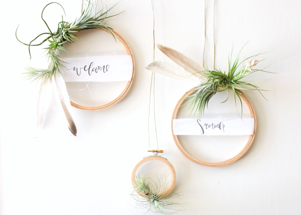 air plant wreath welcome summer 3 DIY Tutorial: Summer Air Plant Wreath
