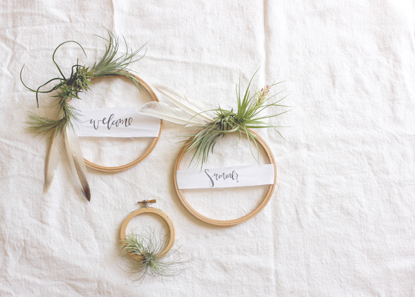 air plant wreath welcome summer 4 DIY Tutorial: Summer Air Plant Wreath
