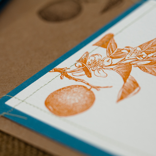 6a00e554ee8a228833011571391cc1970c pi Citrus + Stitched Wedding Invitations