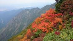 八海山の紅葉